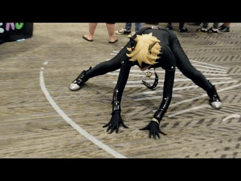 Chat Noir's Weakness   LASER POINTER   Anime PDX 2016