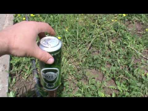 Как посадить огурцы правильно