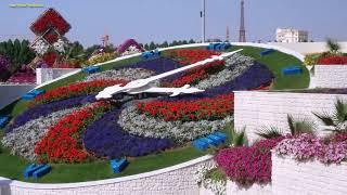 Городские цветы (�нструментальная музыка)