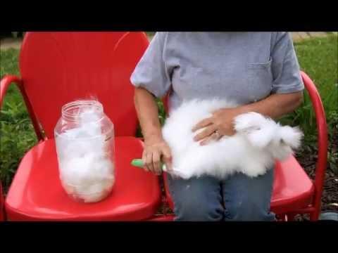 English Angora Wool Dying it, Spinning it, Crocheting it