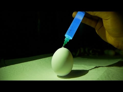 What Happens If You Inject Glow Stick Fluid In Egg?