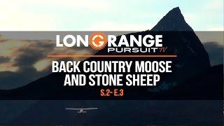Video Long Range Pursuit | S2 E3 Back Country Moose and Stone Sheep MP3, 3GP, MP4, WEBM, AVI, FLV September 2017