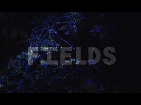 Фестиваль авангардной музыки Fields в МУЗЕОНЕ