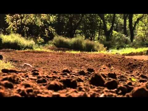 motocross is amazing (mwl edition) 2015