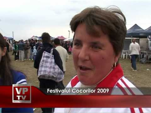 Festivalul Cocorilor 2009