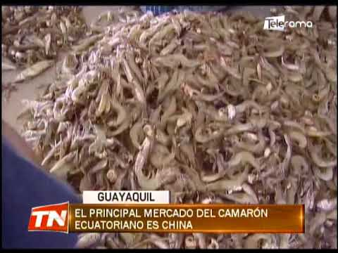 Lenín Moreno verificó medidas de bioseguridad de empresa camaronera