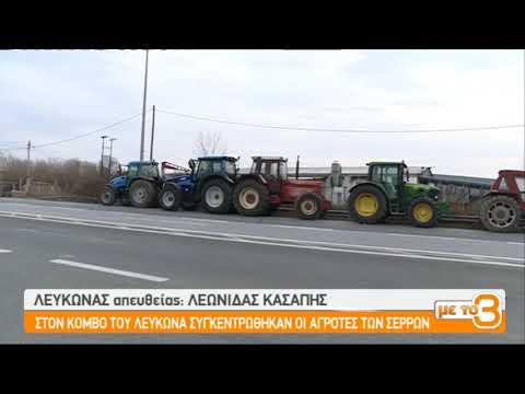 Στον κόμβο του Λευκώνα οι αγρότες των Σερρών  | 28/01/2019 | ΕΡΤ