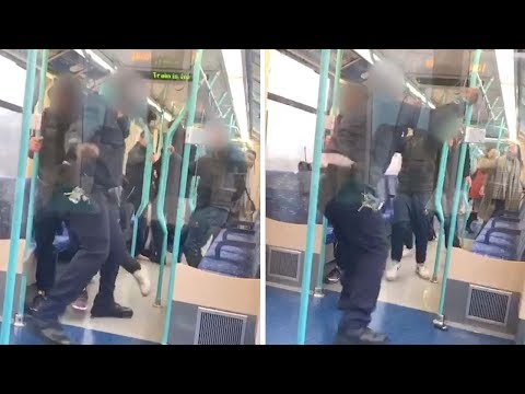 Ticket Inspector Fights Passenger On Train