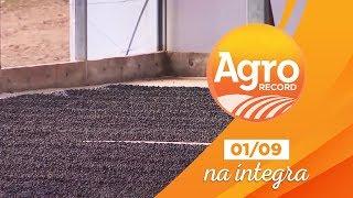 Agro Record na íntegra - 01/Setembro/2019 - Bloco 2