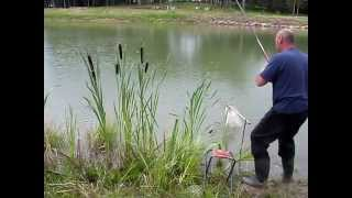 платная рыбалка на карпа саратов