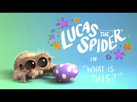 Lucas The Spider in What Is This