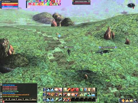 Lineage 2 Hawkeye L2Mid Private Server Gameplay 10