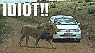 IDIOT ON SAFARI | RENTAL CAR SAFARI! by Supercars of London