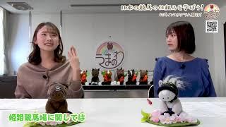 #41 日本の競馬の仕組みを学ぼう!