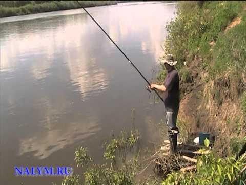 рыбалка с середой на линя