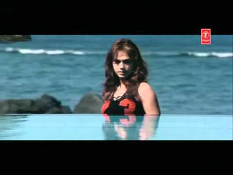 Hamara Dil Songs mp3 download and Lyrics