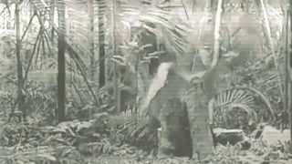 Video Uhol Dopadu - Zem bije na poplach
