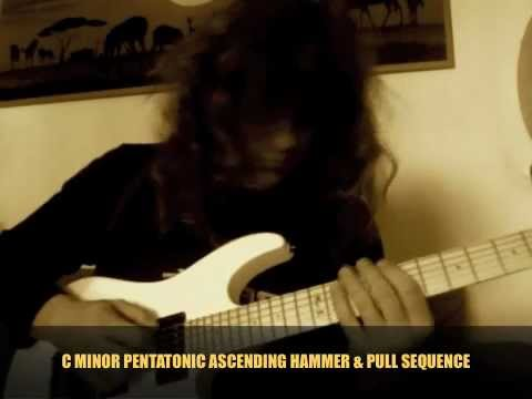 Roberto Vanni: Hammer/Pull, String-Skipping, Sweep & Alternate Picking Combo Licks