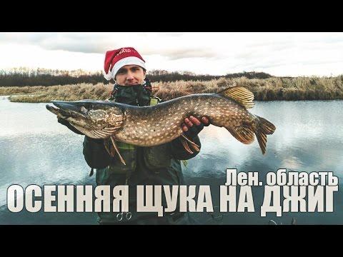 ловля щуки в лен.обл на малых водоемах видео