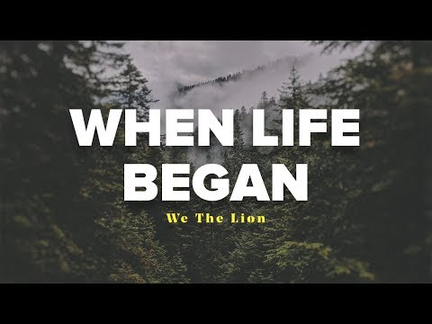 We The Lion - When Life Began (Lyrics Video)