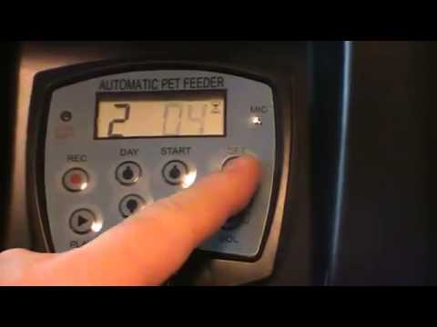 Видео Автокормушка для кошек и собак Pets PF-10A с ЖК дисплеем