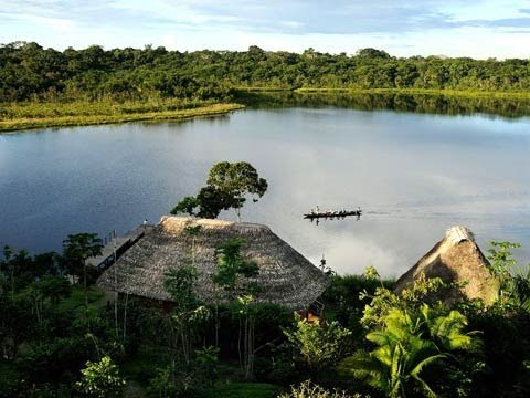 Yasuni national park: 'We want to give it as a gift for humanity'