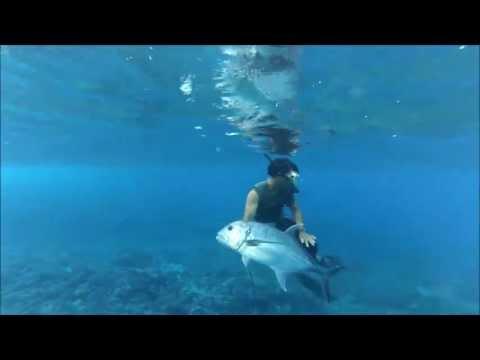 Takapoto Top Spearfishing Giant Travely Polynesie Francaise With Gopro Hero 3