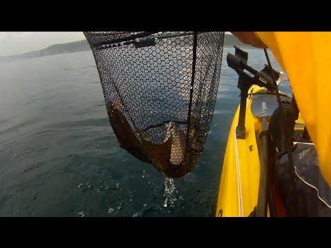 Kayak Fishing – Inshore Reef Fishing for Pollack