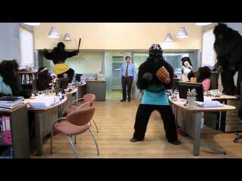 Video of Bigfoot Baseball