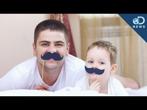 The Science Of Stay-At-Home Dads!