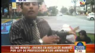 HUELGA DE HAMBRE EXIGIENDO LA LEY DE PROTECCION A LOS ANIMALES PERU LIMA MINISTERIO DE SALUD CANAL 9 YO REPORTERO ULTIMO MINUTO NOTICIAS PRIMERO PROTECCION ANIMALISTAS PERU PERUANOS JESUS MARIA