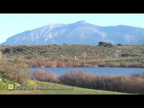 Gran Senda de Málaga. Etapa 19: Campillos-Embalses del Guadalhorce