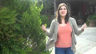 San Antonio Food Truck Finder YouTube video