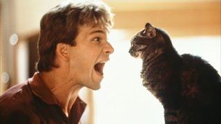Другие сцены из фильма https://www.youtube.com/playlist?list=PLBkWIbijibFix05EChwRxLCE-lnyw09_n Ghost страна: США / 1990 слоган: A love that will last foreve...