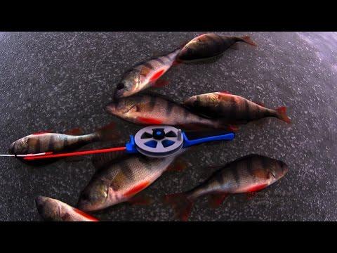 рыбалка на пыздрика видео