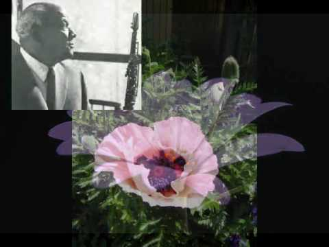 Sidney Bechet Petite Fleur online metal music video by SIDNEY BECHET