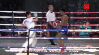 Muay Thai vs Taekwando