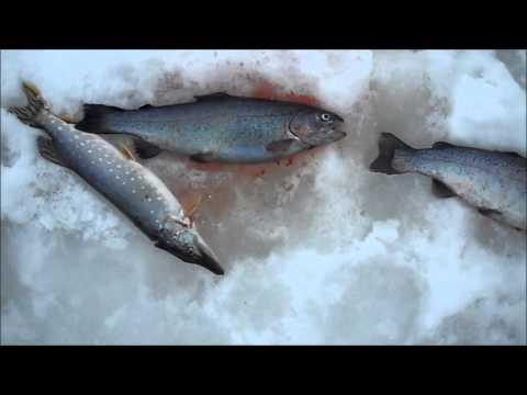 Рыбалка на масленницу
