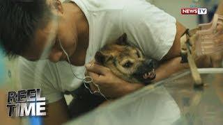 Nang matanggap ng isang Animal Welfare Society sa Valenzuela ang isang social media post tungkol sa asong abandonado sa...