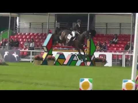 Dassett Jack double clear Blenheim CCI*** September 2014