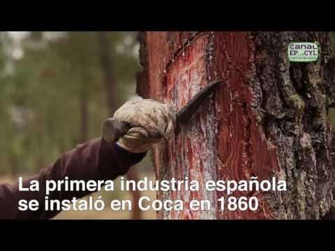La primera industria española de este tipo se instaló en Coca en 1860.