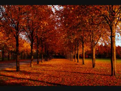 Tekst piosenki Diana Ross & The Supremes - Autumn Leaves po polsku