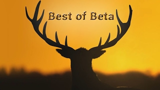 The best scenes from our beta series in less than 5 minutes!Enjoy!The Hunter Call of the Wild is the newest hunting simulation by Expansive Worlds. We received a key for the closed beta so we wanted to bring you guys along our first look and experience with the game. You have to keep in mind that it's still a beta so crashes and bugs are quite common. Not everything is perfect yet but we hope you enjoy it anyways! This will of course not replace The Hunter Classic!Pratzes Channel: https://www.youtube.com/user/pratze86Pratzes Video: Thanks for your awesome support and for your patience!!!Commentated gameplay by Emil (EmilN) & Fape (fape19988).I'm very happy about every Like/Comment/Favo/Subscribe!Please tell me if you find mistakes in the video!I would like to see criticism.Everyone can add me in The Hunter and in Skype! LINKS:GAME: The Hunter: http://www.thehunter.comFACEBOOK: http://www.facebook.com/pages/Fapes-The-Hunter-LPs/551338284910228MUSIK: The Hunter Soundtrack © expansive worlds / TearMusic : Knife vs. GunFORUM: http://forum.thehunter.com/index.php?sid=ff196f4f6372fd5977f39e60c21d46e6GERMAN FORUM: http://huntertalk.de/index.php?sid=5d5d8abaa4a96439f89f112917511013SUBSCRIBE: http://www.youtube.com/user/FapesTheHunterLPsFabi