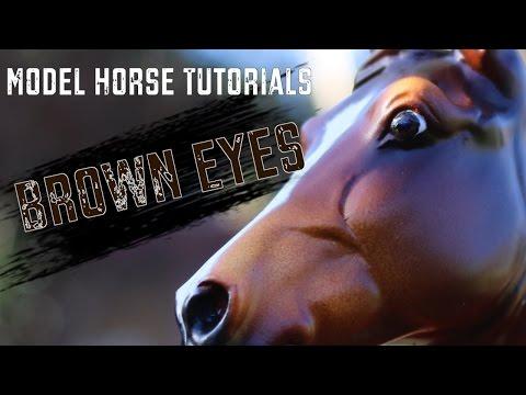 Video Model Horse Tutorial - Part 1: Brown Eyes download in MP3, 3GP, MP4, WEBM, AVI, FLV January 2017