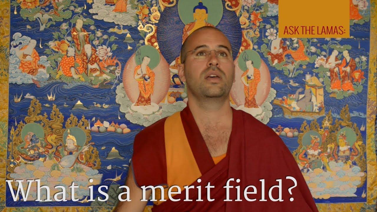 What is a merit field?