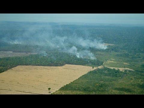 Tracking Amazon deforestation with satellite imagery