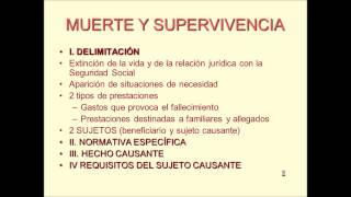 Umh1909 2012-13 Lec015 Prestaciones Por Muerte Y Supervivencia (1/4)
