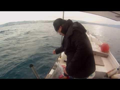 kuşadası balık avı [BIRAKMA AVI ]