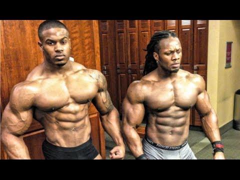 Bodybuilding Exercises Video Download Free