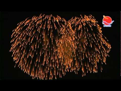 新潟県柏崎市海の大花火大会 2010ヴァージョン